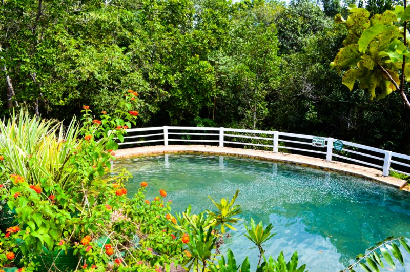 thermas-cachoeira-da-fumaca-19