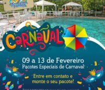 Carnaval está chegando…